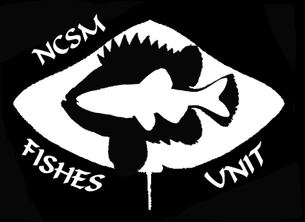 NCSM Ichthyology Collection